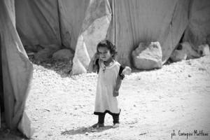 siria-06-canapini